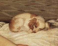 "Tiziano Vecellio ""Venus of Urbino"" ; fragmento"